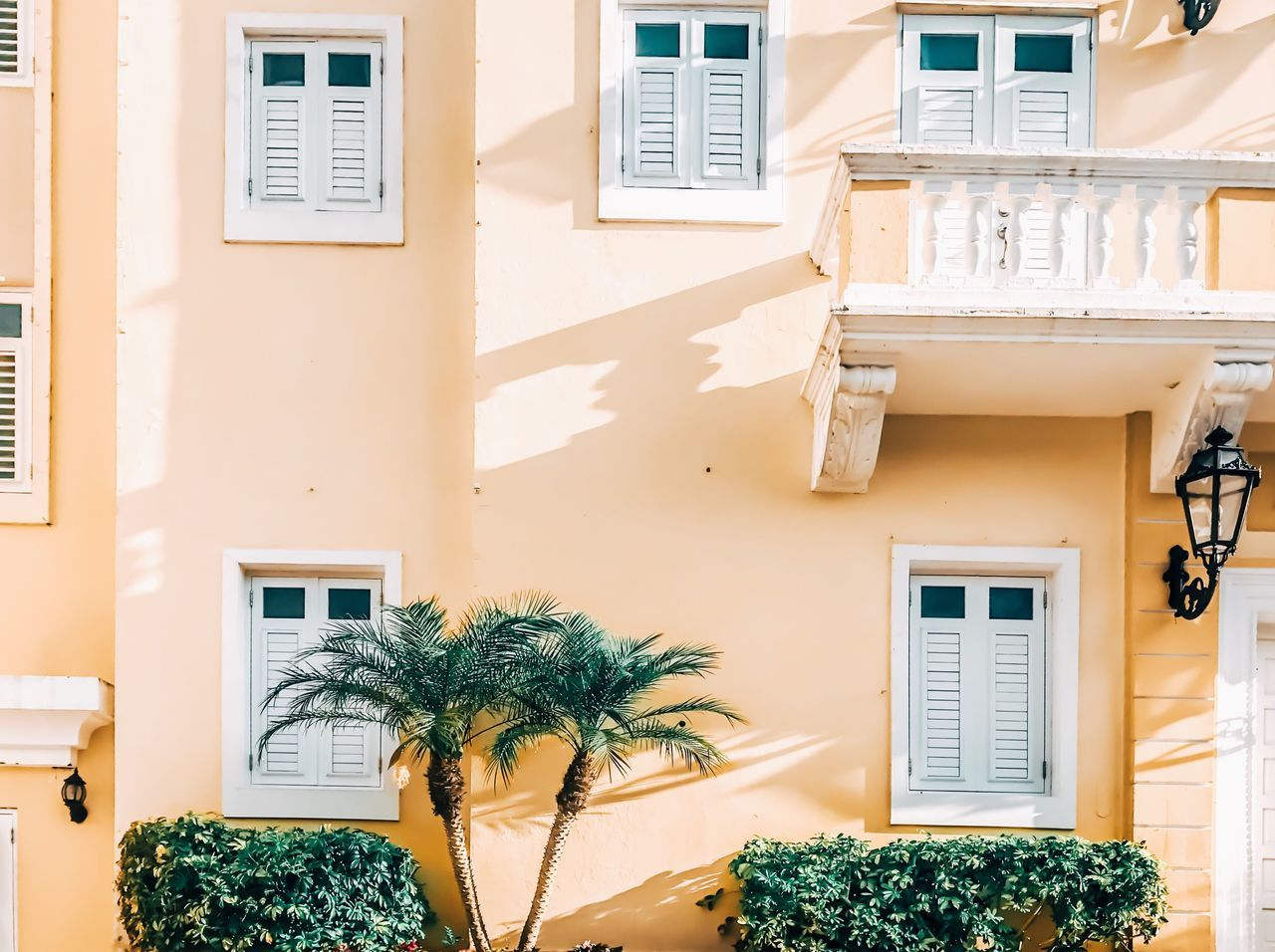 Architecture Building Exterior Window Built Structure House Residential Building Potted Plant Day Growth Outdoors Sunlight No People Tree Window Box