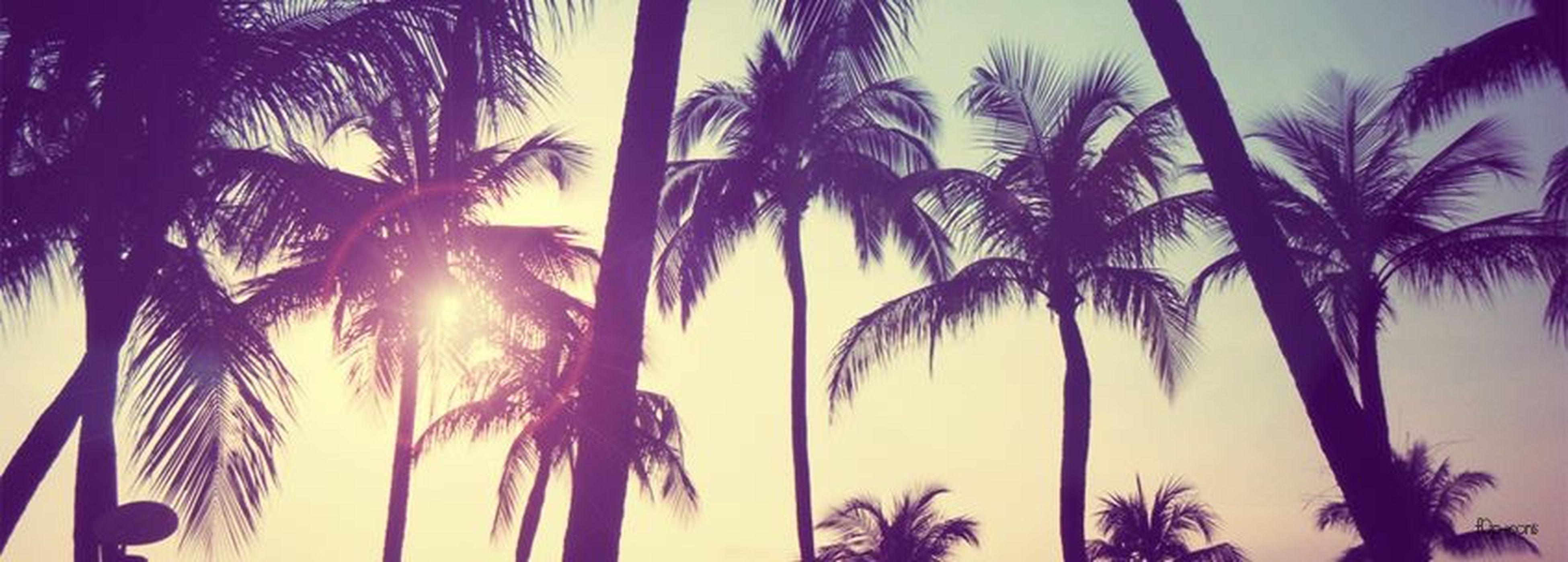 Holidays ☀