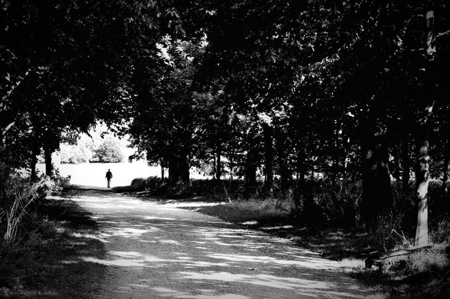 Mystery man   Taking Photos Eye4photography  Silhouette Hugging A Tree People Watching Getting In Touch People Blackandwhite Beautiful Nature Monochrome