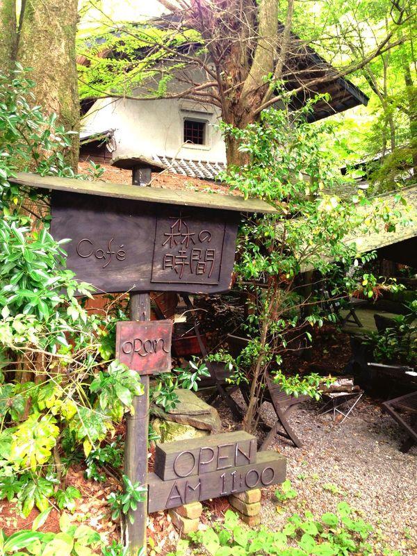 熊本カフェ 熊本 小国 カフェ Cafe 森の時間 ランチ Lunch 自然