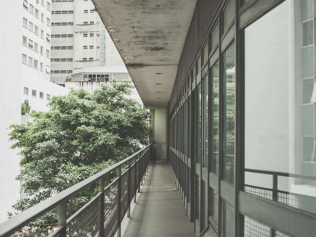 São Paulo Sao Paulo - Brazil Architecture Corridor Brazil Brazilian Architecture city Outdoors