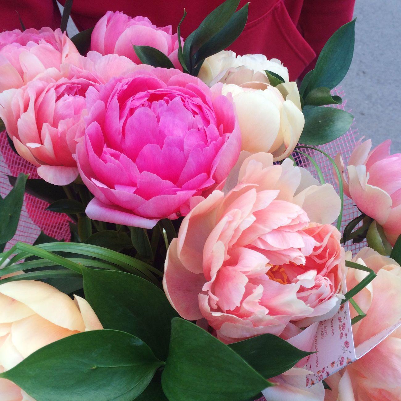 Flowerlovers Favoriteflower Flowershop 🌸💐🌸💐🌸💐🎀💕