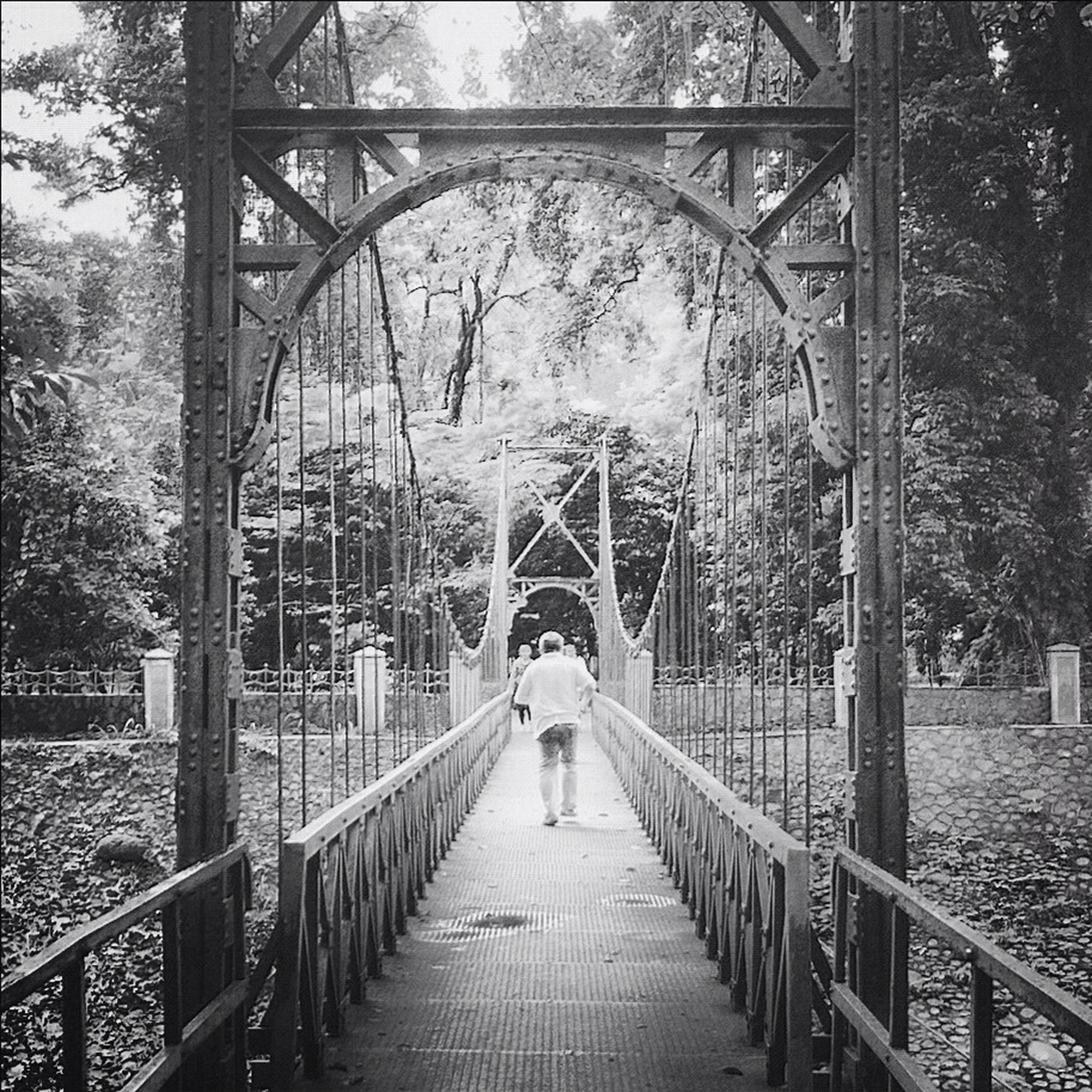 the way forward, railing, lifestyles, tree, rear view, full length, walking, built structure, footbridge, architecture, leisure activity, bridge - man made structure, connection, diminishing perspective, men, person, vanishing point, metal