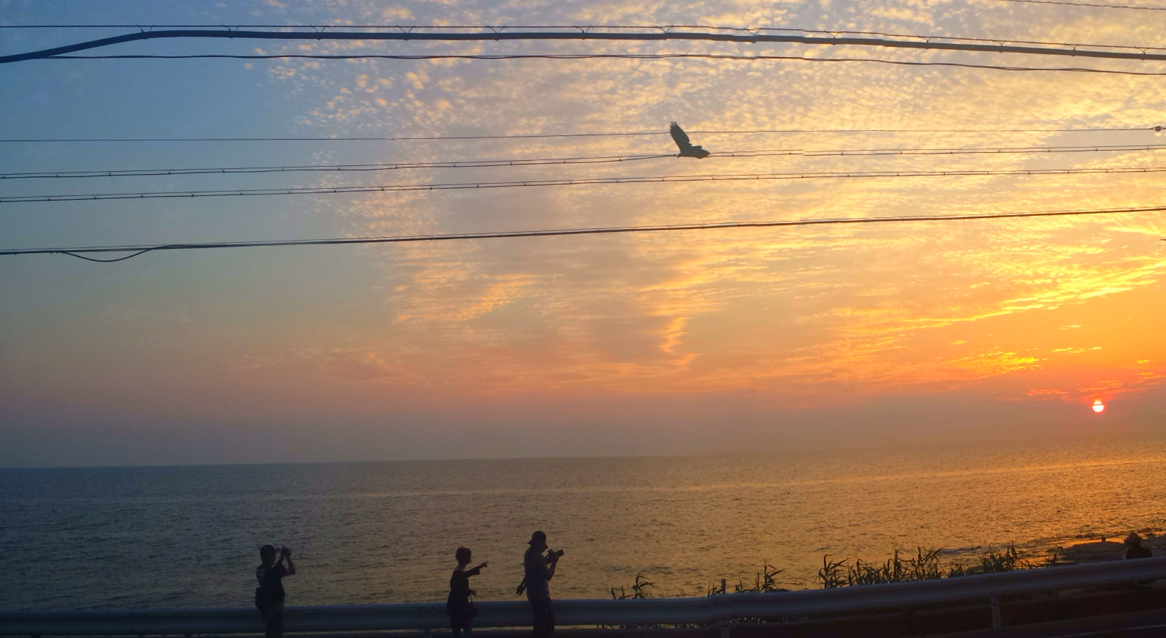 sea, horizon over water, sunset, water, silhouette, sky, scenics, beauty in nature, bird, tranquility, tranquil scene, nature, beach, orange color, idyllic, cloud - sky, shore, animal themes, unrecognizable person
