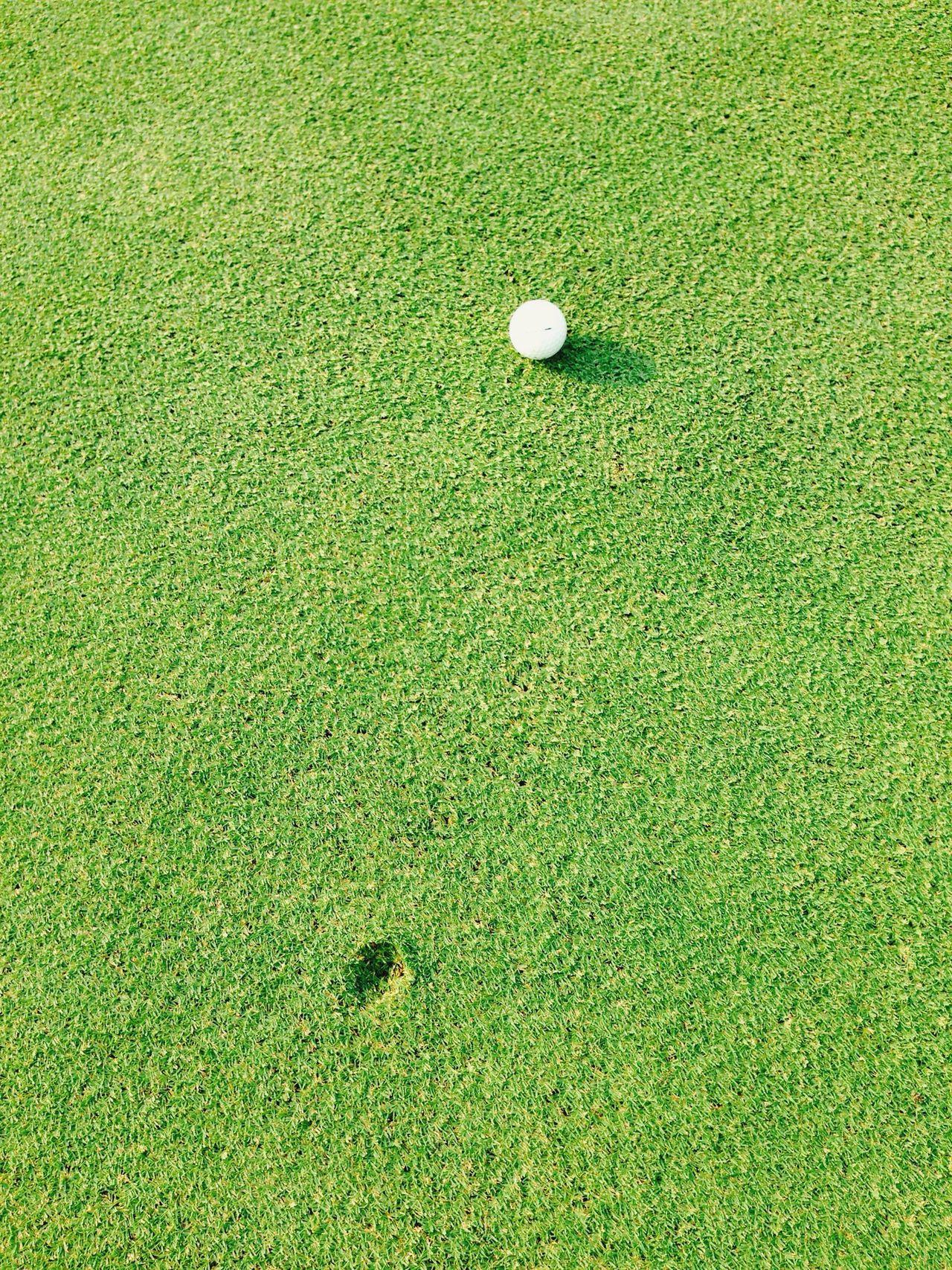 Beautiful stock photos of golf, Day, Golf Ball, Golf Course, Grass