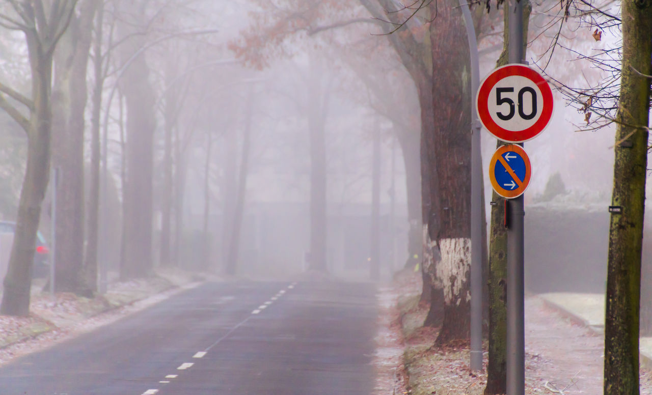 Arrow Cold Communication Day Dust Foggy Foggy Morning Guidance Mist Misty Misty Morning Nature Nebel No People Outdoors Road Road Road Sign Speed Limit Sign Street Text Tree Winter Zehlendorf