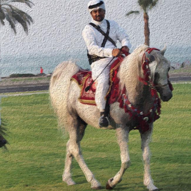 Qatarlife Corniche Doha Horses Cavalry Doha Qatar Palm Qatar Arabian Horse