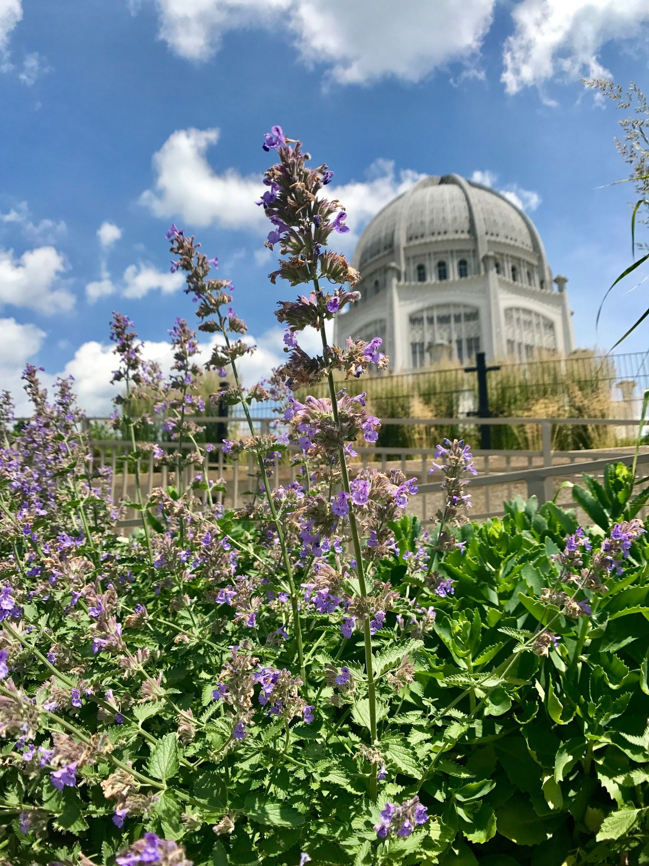 Baha'i House Worship, IL Flower Dome Built Structure Architecture Cloud - Sky Plant Growth Day Fragility Building Exterior Sky Low Angle View Nature No People Outdoors Tree Freshness