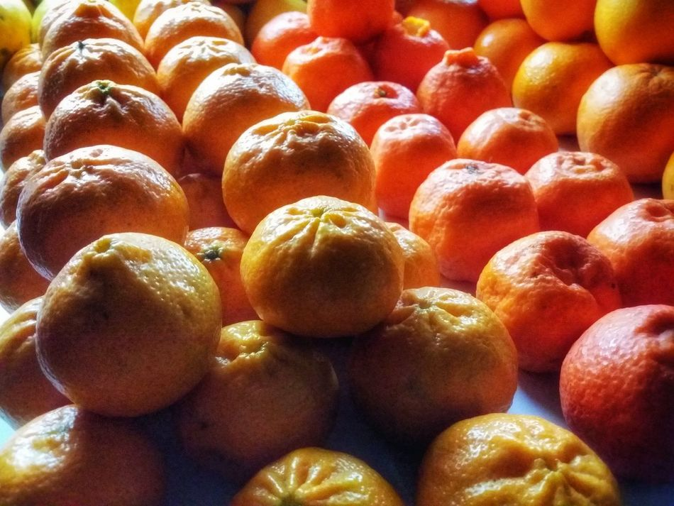 Showcase: FebruaryAll Citrus Are Equal But Some Citrus Are More Equal Than Others Orange Yellow Mobile Photography Backlight Art Fineart Mobile Editing