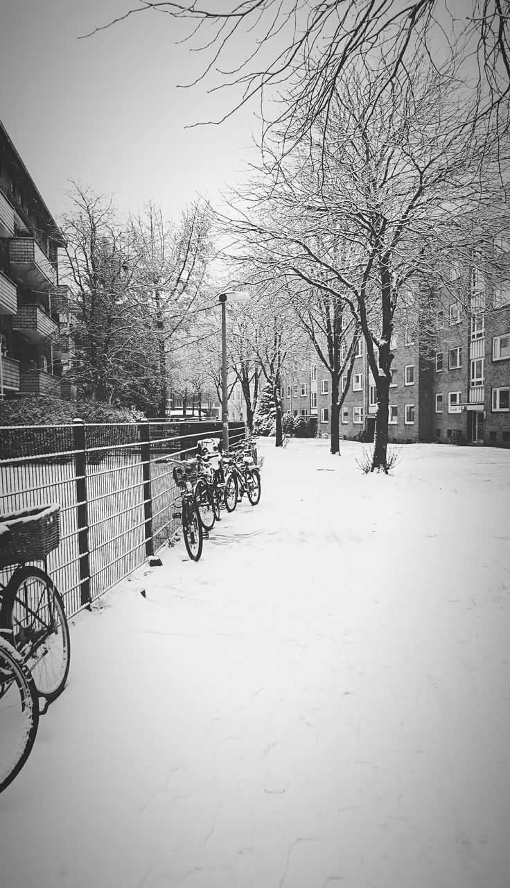 bicycle, winter, outdoors, cold temperature, snow, day, tree, bare tree, built structure, architecture, nature, building exterior, no people, clear sky, sky