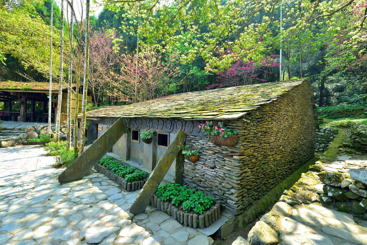 Architecture Beauty In Nature Built Structure Day Green Color Growth Nature No People Outdoors Plant Tree Water 九族文化村 原住民 台灣 屋子 建物 性質 旅遊 櫻花 石頭屋