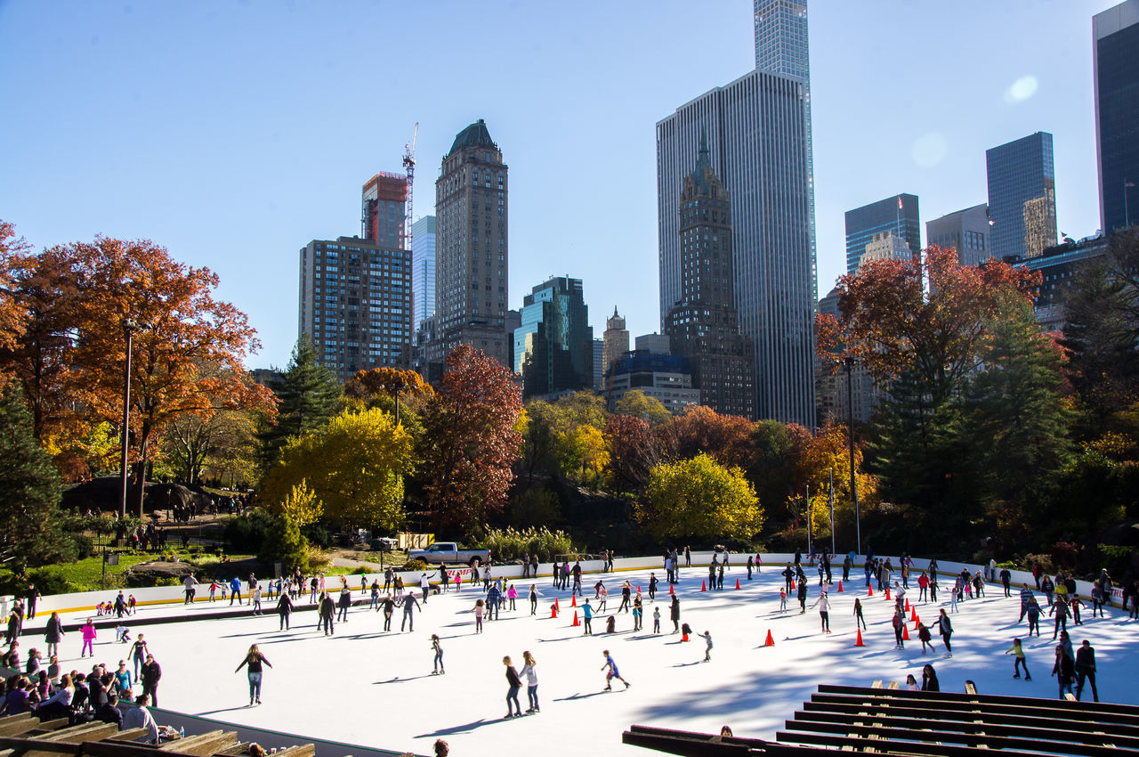 skyscraper, tree, building exterior, large group of people, architecture, city, built structure, real people, tower, park - man made space, outdoors, cityscape, winter sport, day, modern, urban skyline, sky, clear sky, ice-skating, nature, ice rink, people