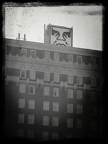Shepard Fairey Downtown Charleston  Black And White Photography