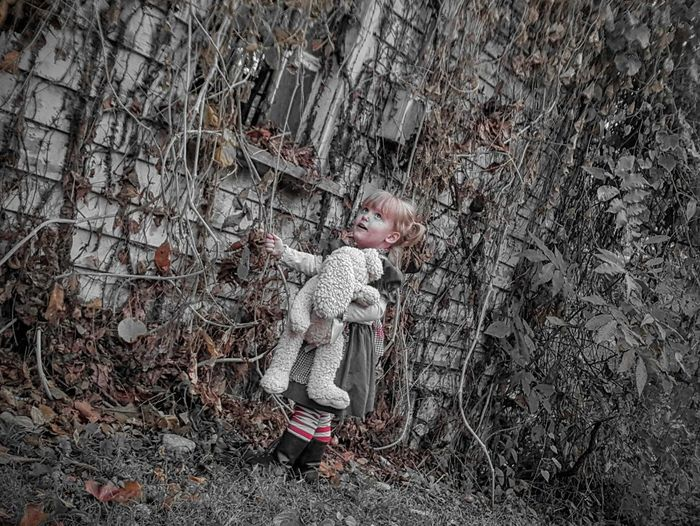 Another Scooby-Goose Mystery- Halloween 2015- Ok gang I'm going to pull on this.... Halloween EyeEm Samhein Gwennie Goose Gwinning Gwenniegoose Black&white Red Cute Bunny  Raggedy Ann My Baby Samsungphotography Eye4photography  Eyeemphoto People And Places Abandoned Look! Outdoors Abundance