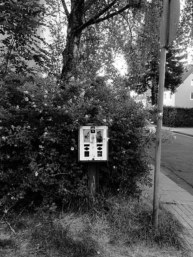 The Minimals (less Edit Juxt Photography) Universität Bielefeld BTM Streetphotography_bw Streetphoto_bw Blackandwhite