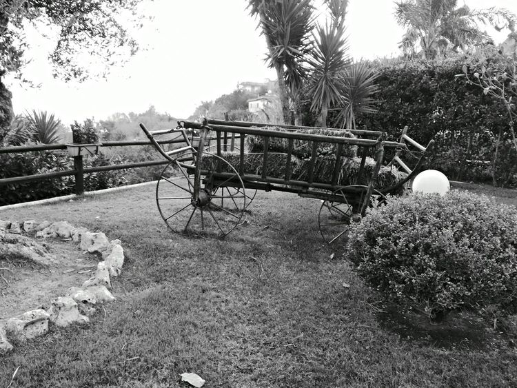Vintage Effects Old Car Original Old Car Countryside Black And White Photography Bkack & White Outdoor Photography Outdoors No People