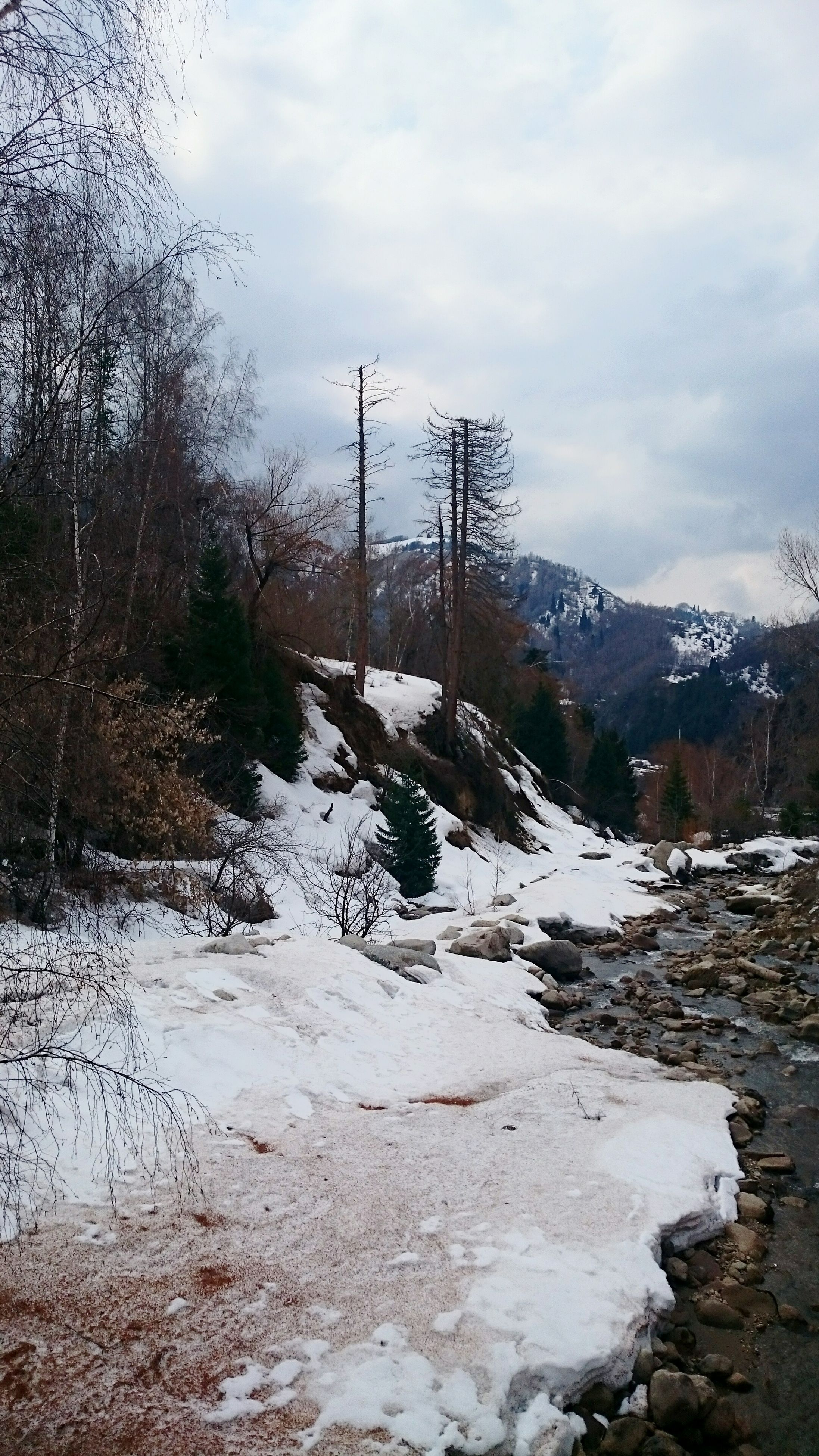 sky, snow, cold temperature, winter, tranquility, tranquil scene, mountain, cloud - sky, water, scenics, weather, nature, landscape, beauty in nature, cloudy, tree, season, river, non-urban scene, day
