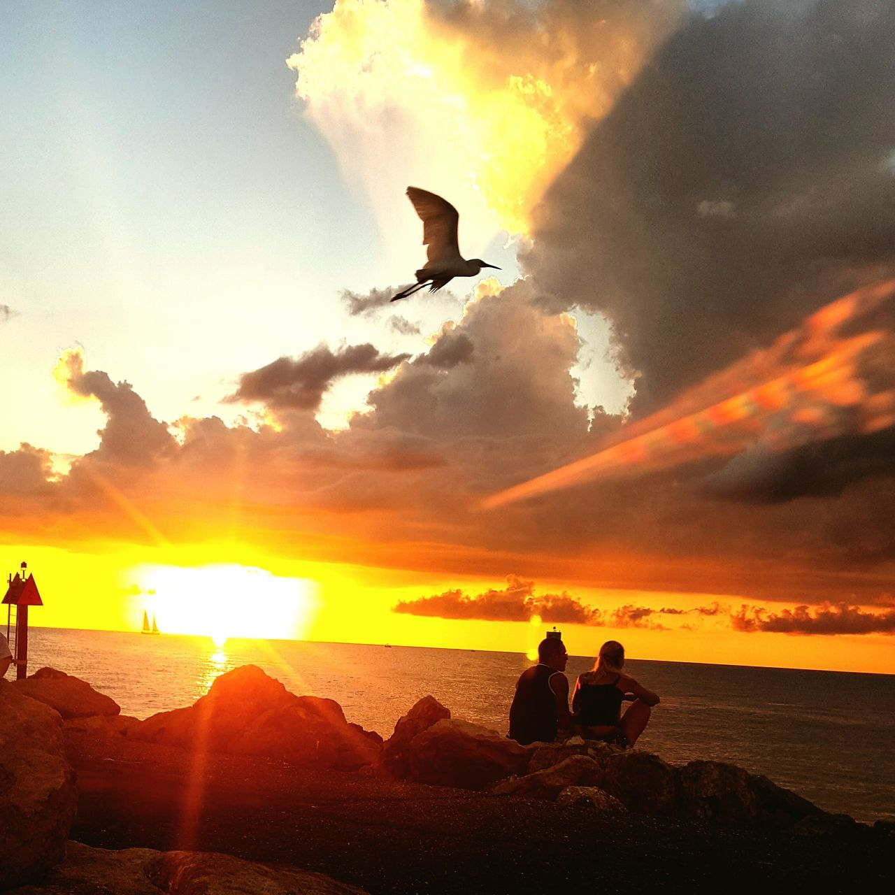 sunset, silhouette, sky, sea, orange color, nature, cloud - sky, beauty in nature, flying, beach, water, sun, scenics, outdoors, bird, horizon over water, real people, leisure activity, togetherness, tranquil scene, men, sunlight, tranquility, sitting, animals in the wild, friendship, day, people
