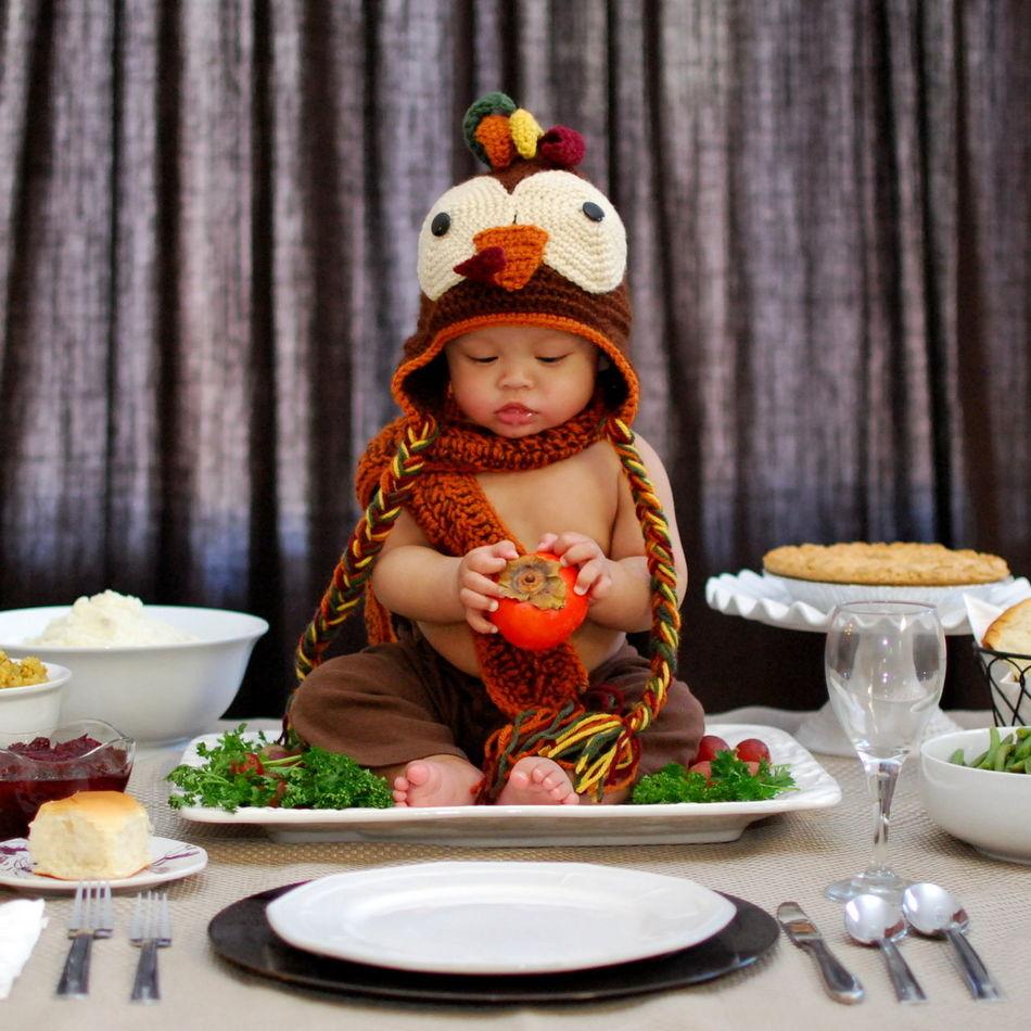 Beautiful stock photos of thanksgiving, , Animal Representation, Animal Themes, Childhood