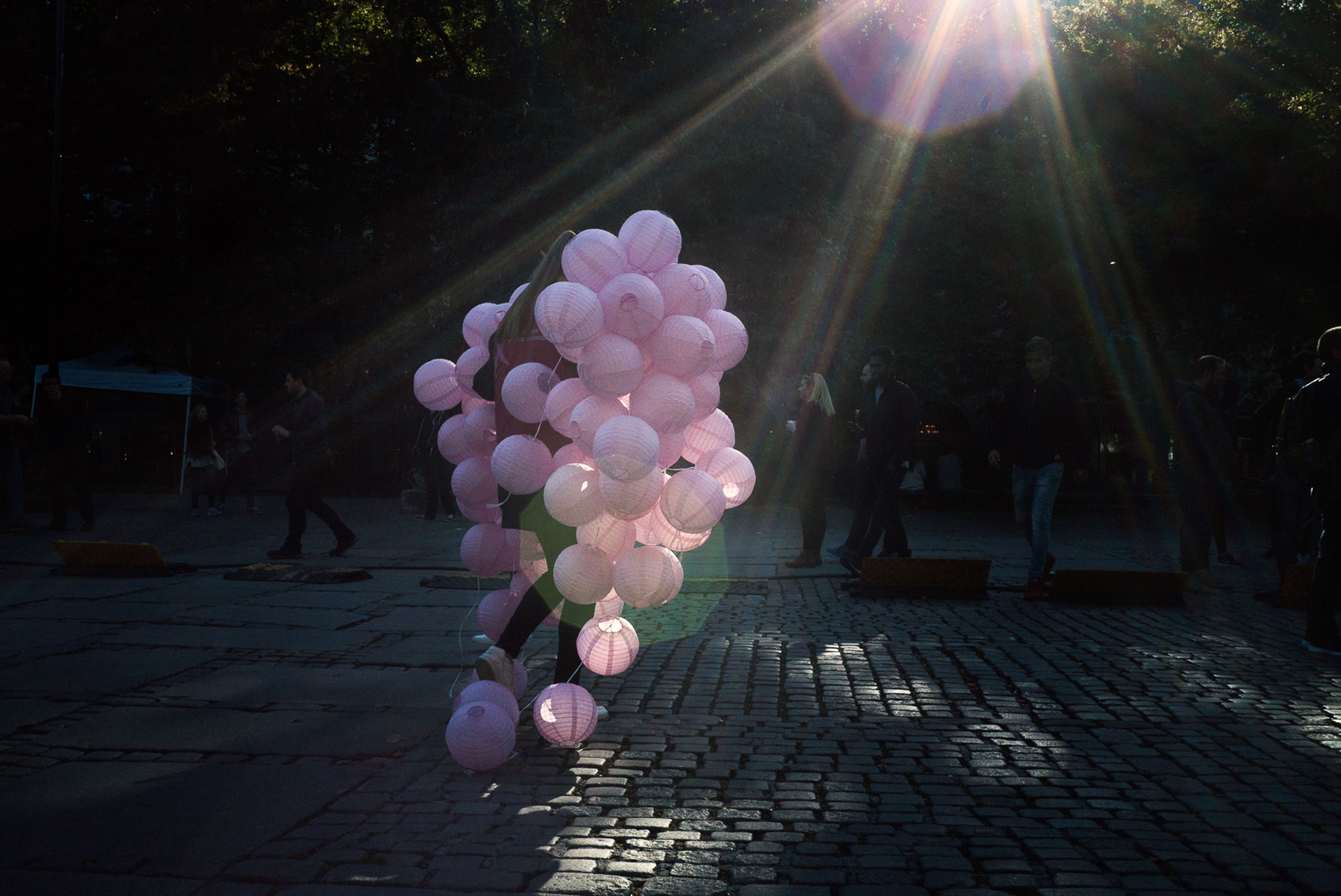 sunlight, outdoors, celebration, no people, day, balloon, flower, nature