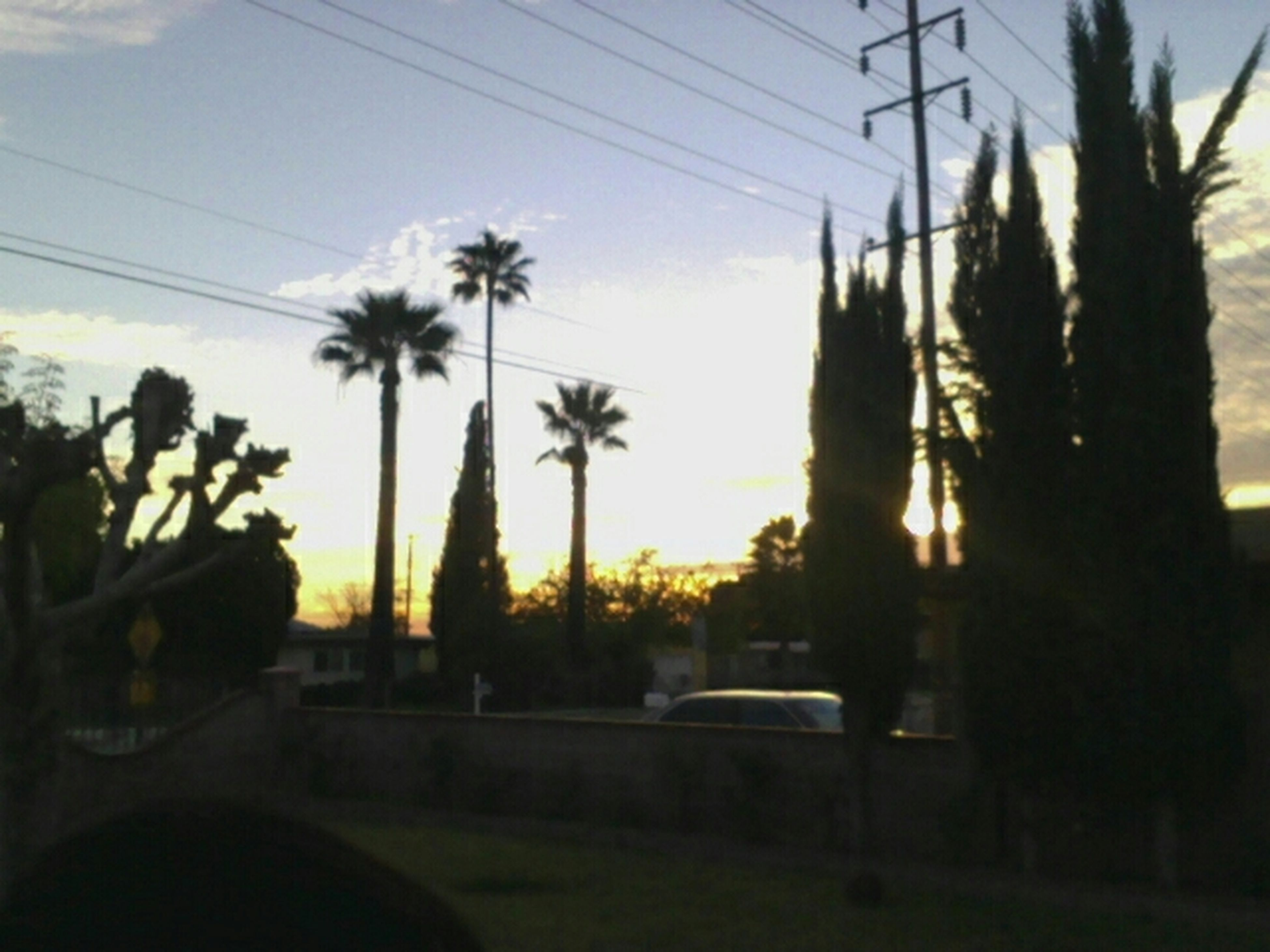 Looks Beautiful Outside