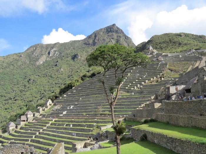Ancient Architecture Ancient City Ancient Civilization Ancient Ruins Archaeology Famous Place Inca International Landmark Machu Picchu Machu Picchu Machu Picchu - Peru Mountain Old Ruin Peru Travel The World