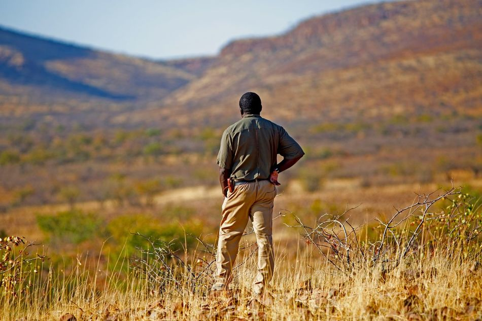 Beautiful stock photos of police,  Authority,  Beauty In Nature,  Day,  Field