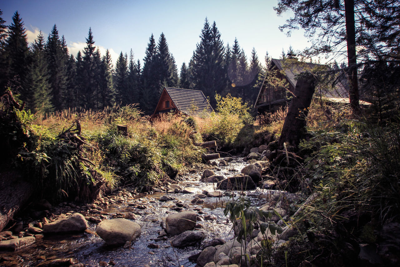 High Tatras Vysoke Tatry Vysoketatry Slovakia Mountains Forest Holiday Water Water Reflections Autumn Authentic Moments Holiday House Picture Taking Photos Popular Place Memory Lovely Day Walking Around Climbing A Mountain