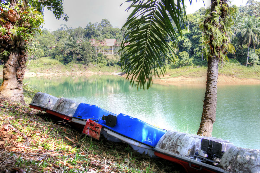 Kenyir Lake is the largest man-made lake in South-East Asia. Covering an area of 260,000 hectares, it is home to some 300 species of freshwater fishes Beauty In Nature Boats Grass Kenyir Kenyir Lake Lake Lakeside Malaysia Nature Nautical Vessel Outdoors Sky Terengganu Tree Tropical Climate Tropical Jungle Tropical Paradise Water