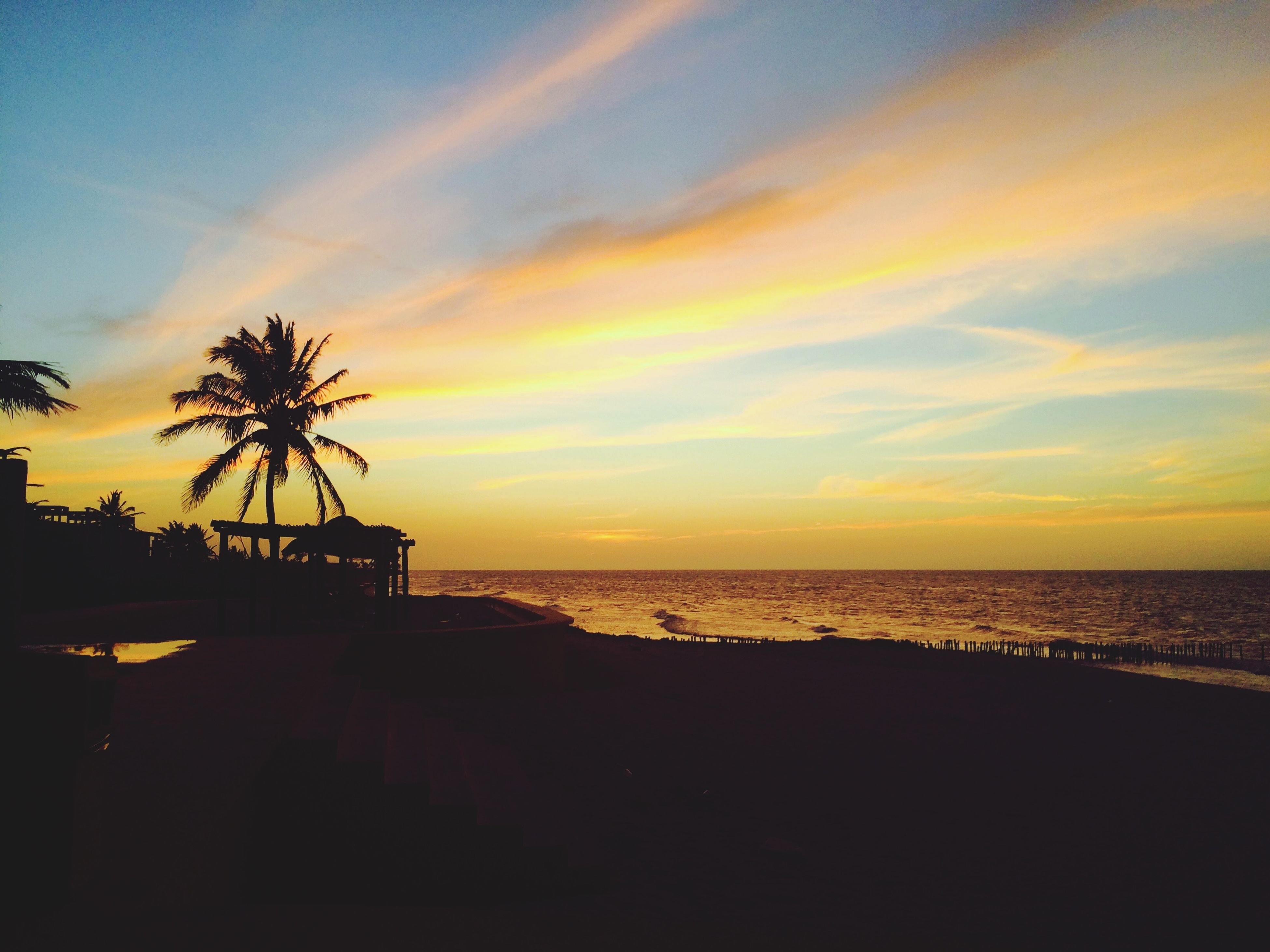 sea, horizon over water, sunset, water, sky, tranquil scene, scenics, silhouette, beauty in nature, tranquility, beach, palm tree, nature, cloud - sky, idyllic, orange color, cloud, shore, tree, outdoors