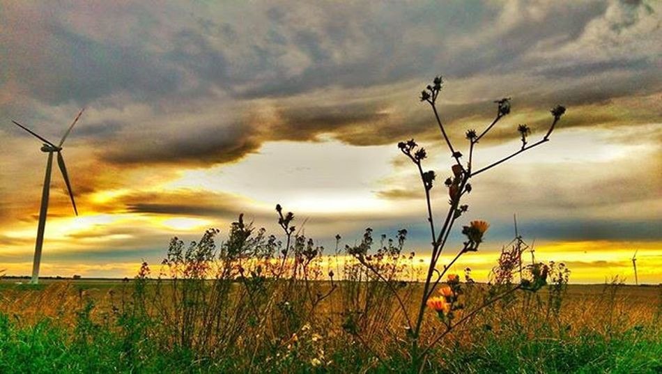 Sunset Ayad_photography Rsa_sunset HDR Tv_hdr Clouds Naturelovers Match_colour Likeforlike Like4like Ig_masterpiece Super_sunsets Super_polska Poland Match_hdr Greatshotz Ig_photooftheday