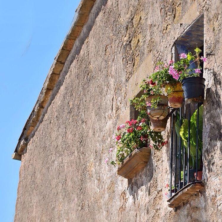 THE BALCONY ___ Flores en los balcones !!! Porque el alma necesita de un punto de color, de vida, de frescura para distraerse de la grisura y mediocridad de cada día. (Casa típica de Mirambel, Lleida) .______ Flowers on the balconies!!! Because the soul needs a point of color, a spice of life and freshness to distract it from the mediocrity and sadness of every day. (Typical Mirambell house, Lleida)___ Flower Somosfelices Countryside Balcony Lleida Mirambell Segre-rialb Architecture