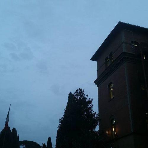 Horror Architecture Building Exterior Evening Grey Sky Outdoors Sky Wind