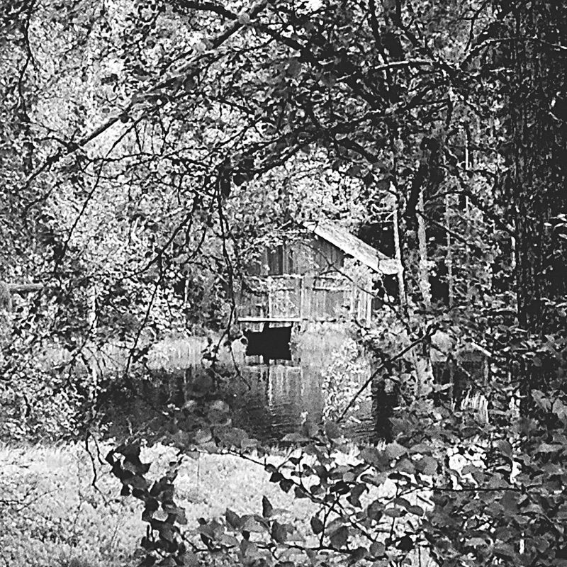Nature On Your Doorstep Boat house in black and white.