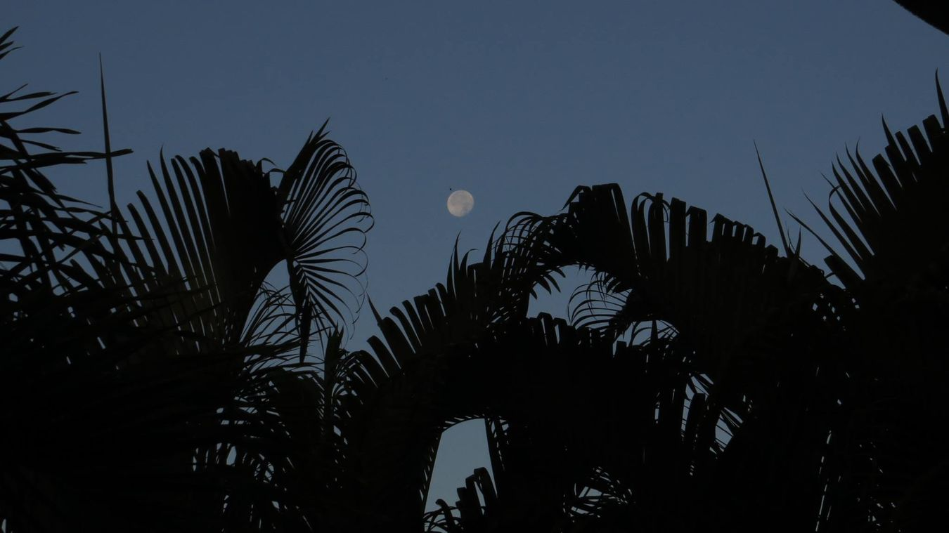 Missing that place ❤️ The Moon Nice Day The View From My Window Republicadominicana Vacations La Luna La Lune Clear Blue Sky Morning Sky Memories
