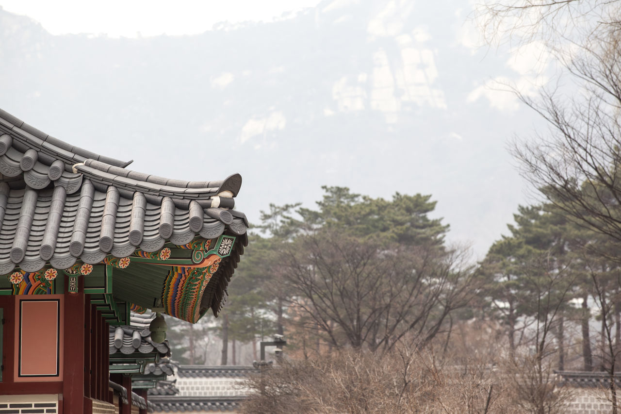 Architecture Building Exterior Built Structure City Day Famous Place Famous Places Gyungbok Palace Historic Place History Incidental People Outdoors Palace Place Of Worship Religion Roof Sky Spirituality Temple - Building Tourism Travel Travel Destinations Tree