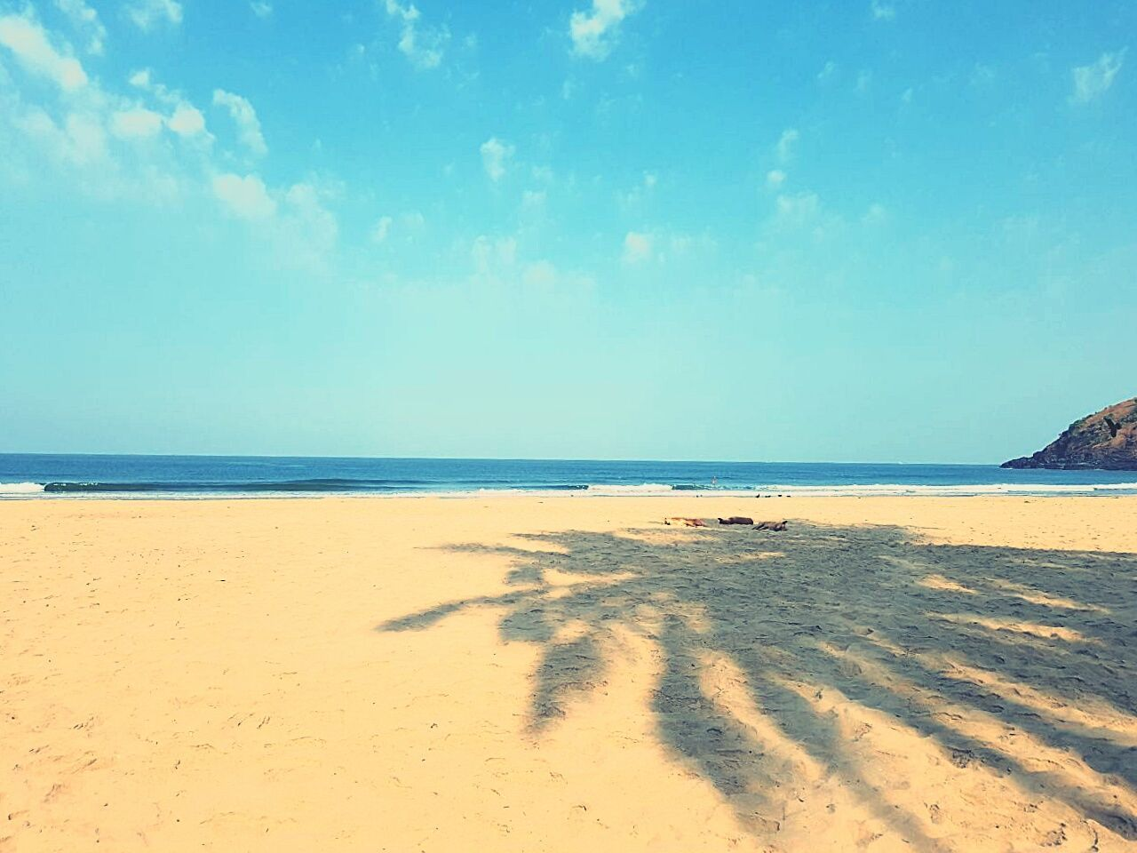 Beach Sand Sea Seascape Horizon Over Water Coastline Sunny Landscape Vacations Sky Blue Summer Travel Destinations Outdoors Tourism Nature Tranquility Sand Dune FootPrint Tranquil Scene Seascape Photography Indiabeaches Sand & Sea Beach Photography EyeEmNewHere 📍