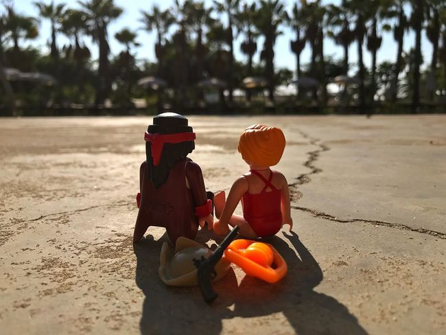 I know what Captain Hook and C.J. Parker did this halloween. Palm Trees Playmobil Outdoors Focus On Foreground Sky Nature