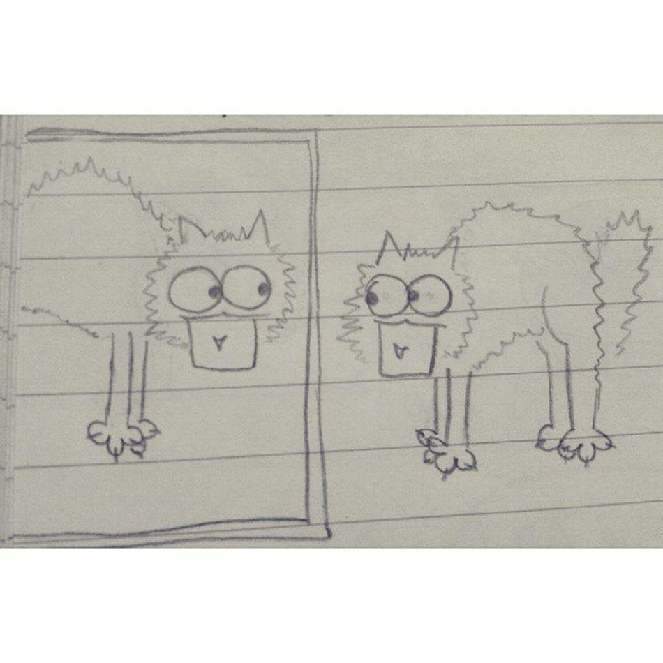Le avventure di un gattosfigato Gatto Gattosfigato Miao Specchio fumetto draw drawing disegno funny :3