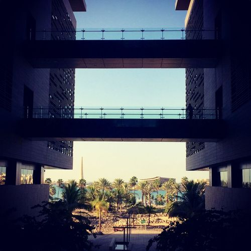 Saudi Arabia Today :) Kaust Lovelyday💛 Wather Almostwinter Morning Good Morning Everyone Architecture Architecture_collection Lovephotography  IPhoneography