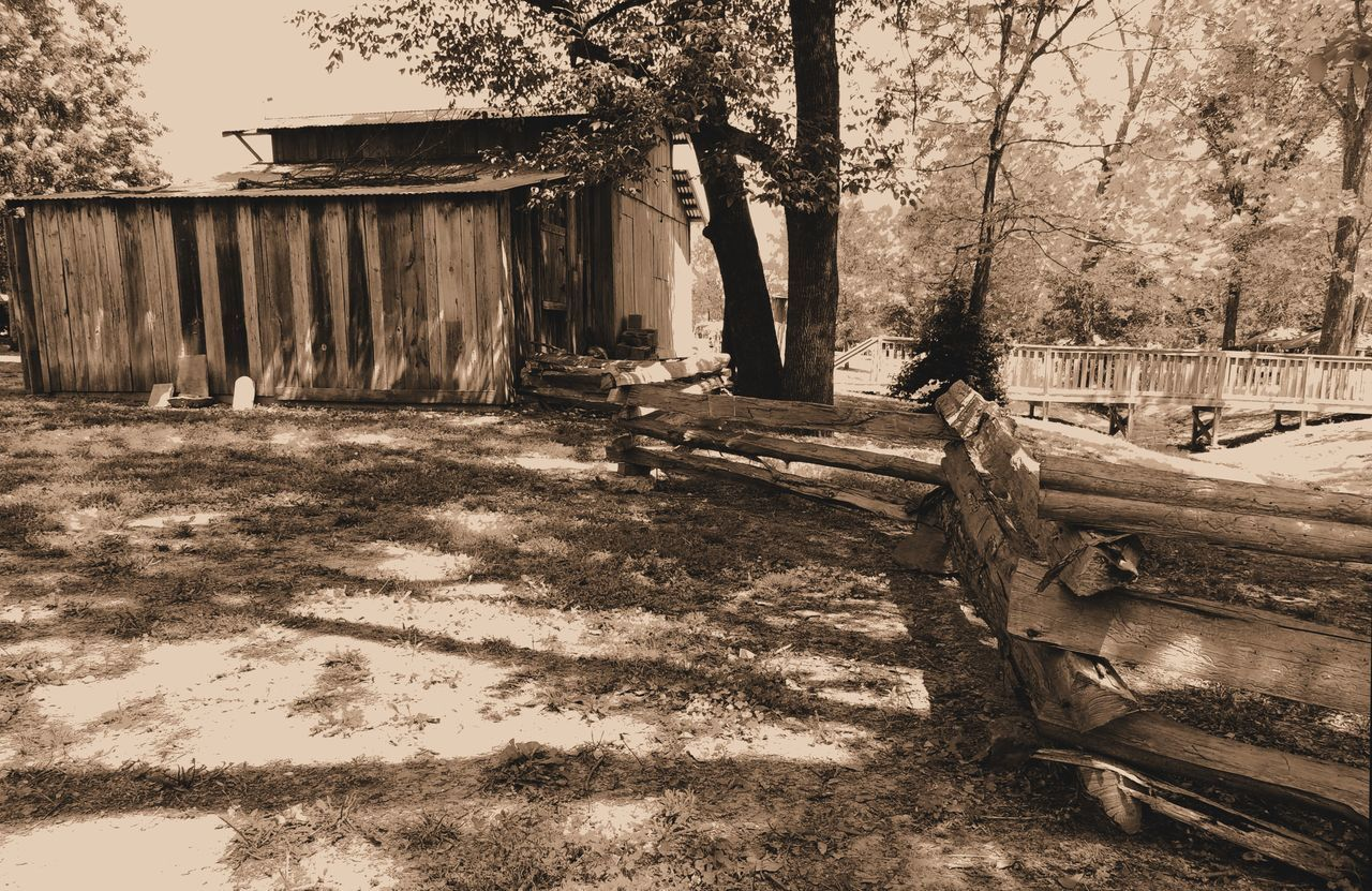 Hut On Field By Trees