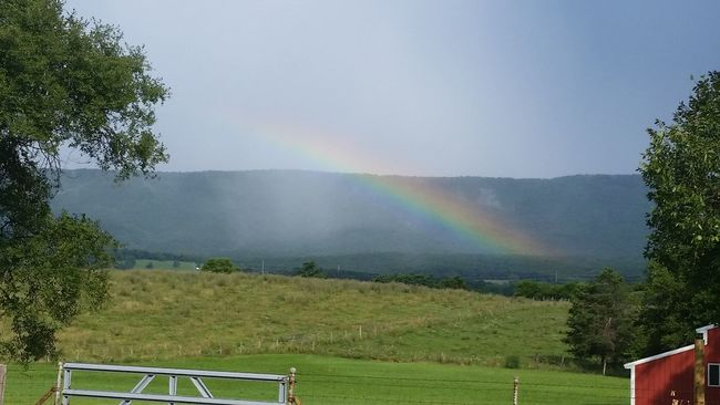 Just an awesome sight on the way home Nature Photography Nature Countryside Country Road Rainbow