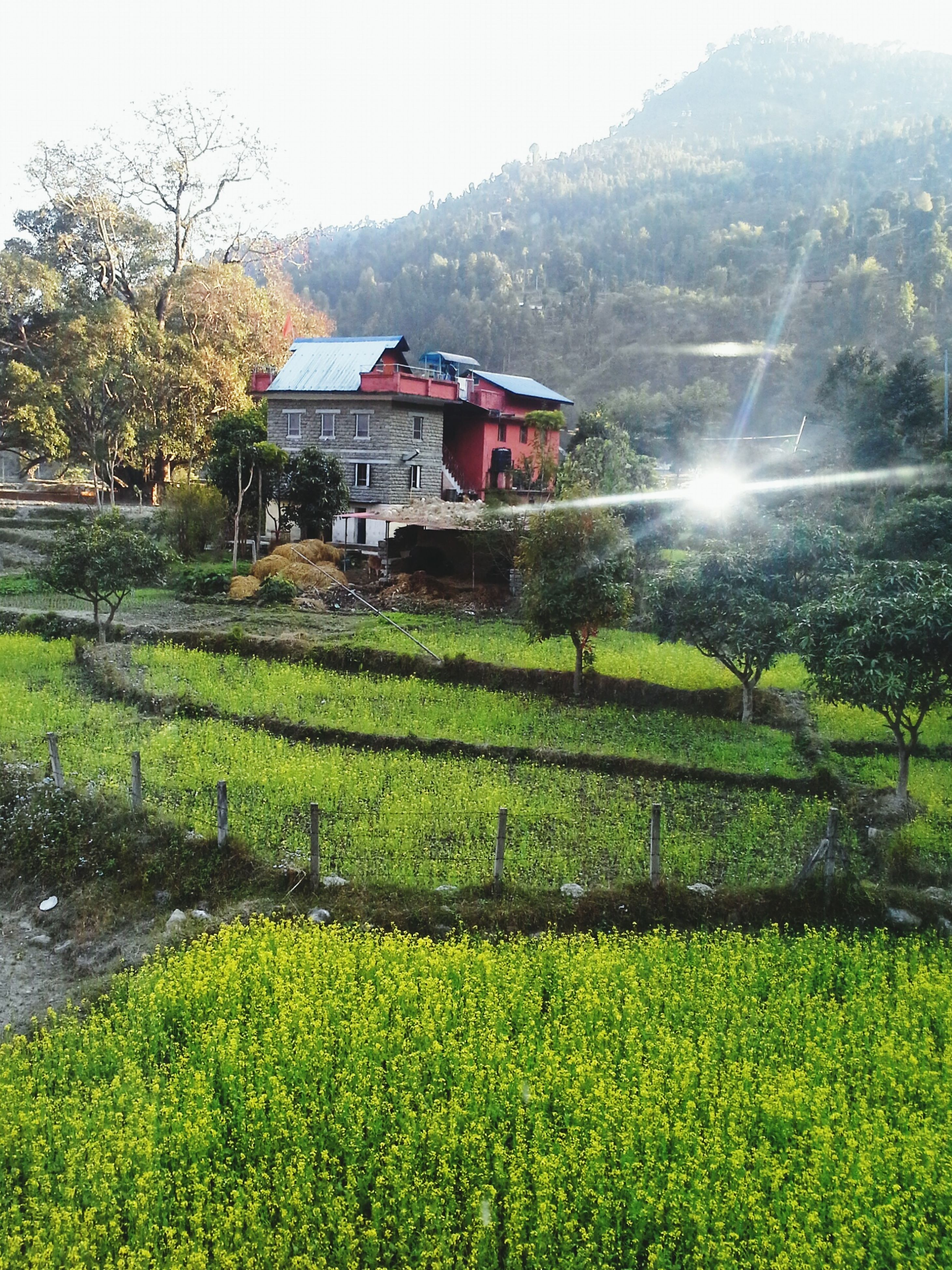 building exterior, architecture, built structure, mountain, house, beauty in nature, growth, nature, clear sky, plant, residential building, green color, residential structure, landscape, scenics, tranquil scene, sky, tree, rural scene, water