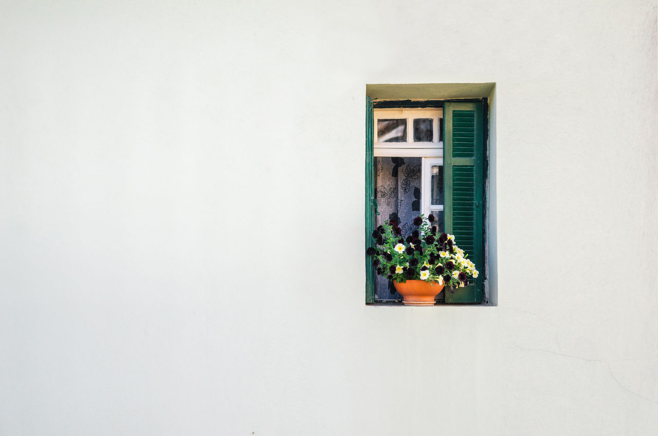 View of the white stone house and the small green window with the curtains and small pot of colorful flowers. Architecture Backgrounds Building Exterior Colorful Curtain Flower Free Open Edit Minimalism No People Open Outdoors Potted Plant Space Stone Wall White Background Window Window Box Minimalist Architecture