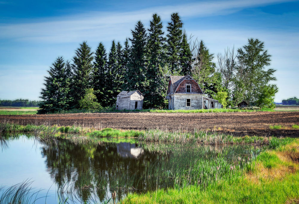 Farm Life Homestead National Monument Reflection Architecture Barn Beauty In Nature Building Exterior Built Structure Country House Day Field Grass Growth House Landscape Nature No People Outdoors Scenics Sky Tranquil Scene Tranquility Tree