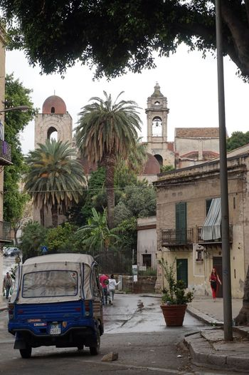 Tree Architecture Outdoors Day City No People Building Exterior Palermo Sicily Italy