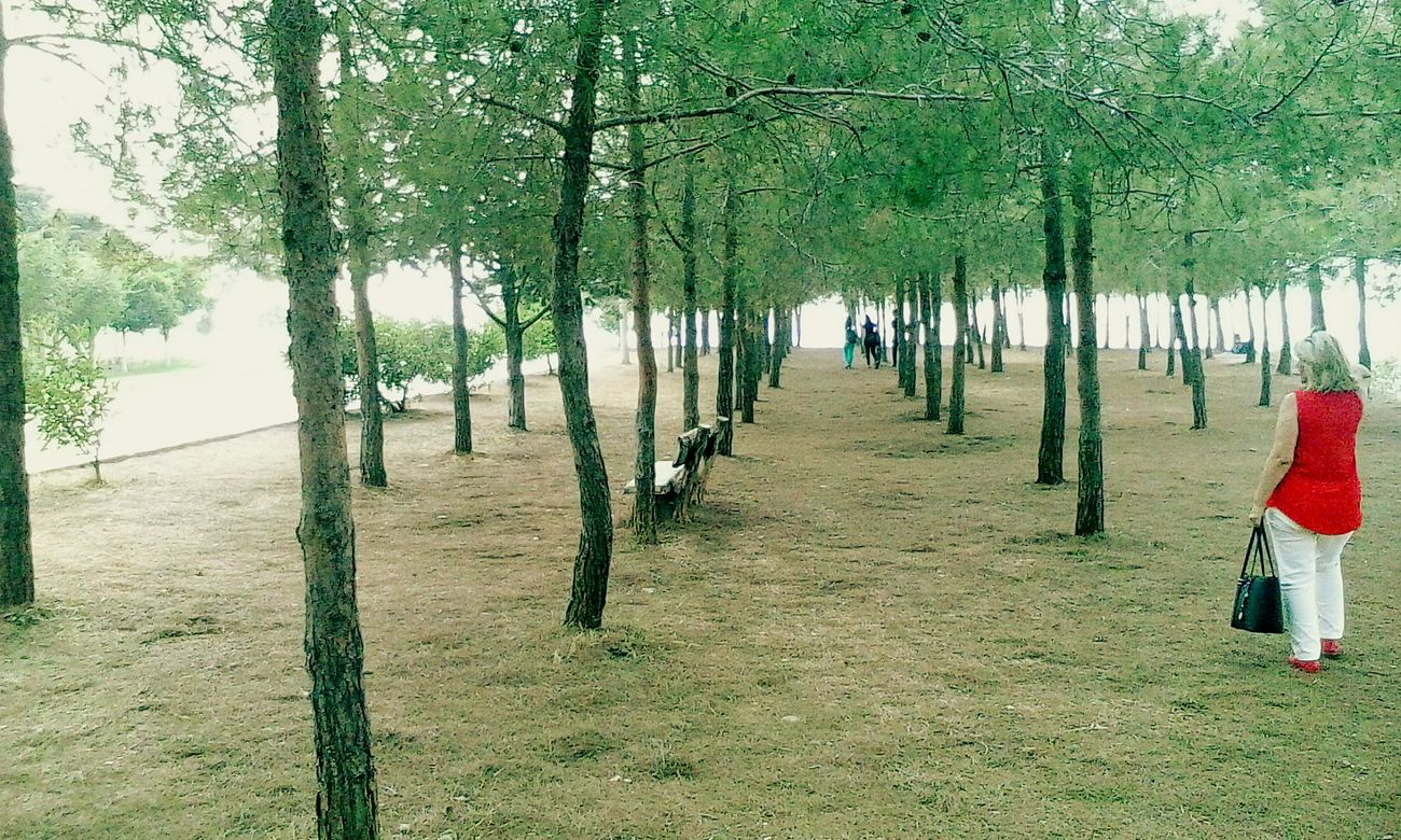 AdanaTurkey Trees Turkuaz Eyem Nature Lover Enjoying Life