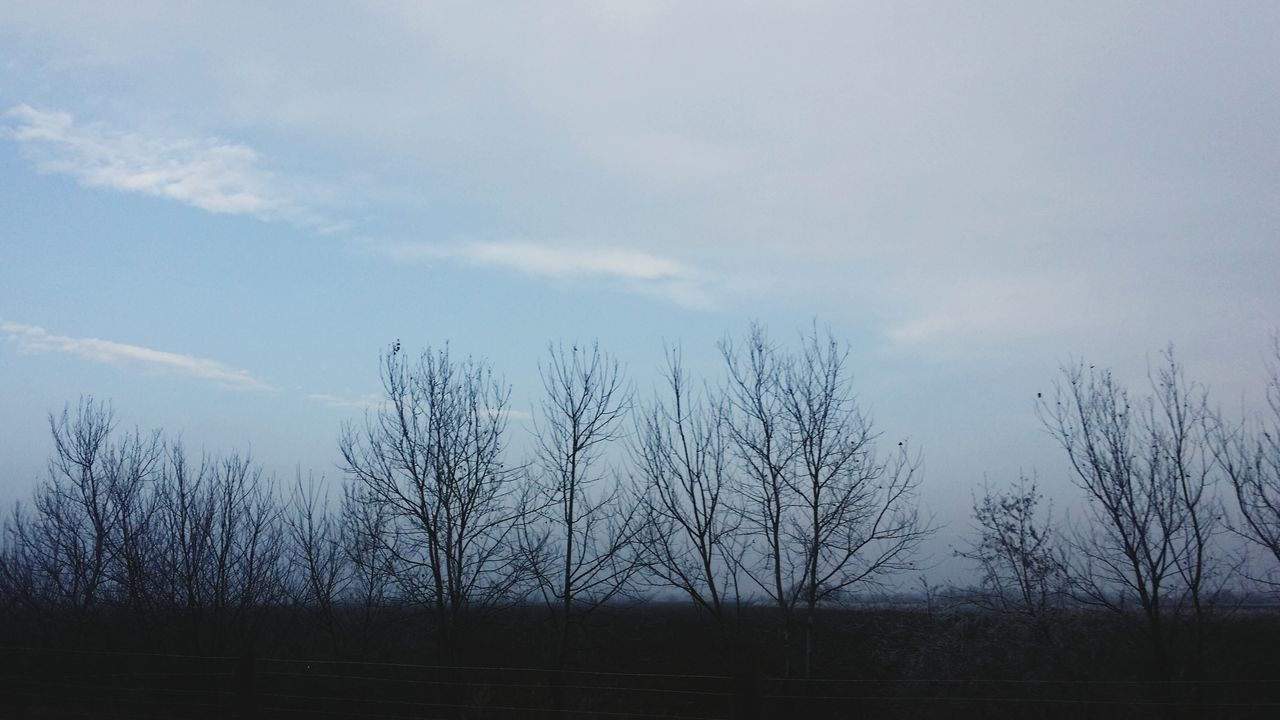 On The Way Cold Days Celebrating Life Winter Motorway Tree Outdoors Full Length Day My Year My View Learning To Edit Sky Heaven Passing By Rush Capture The Moment