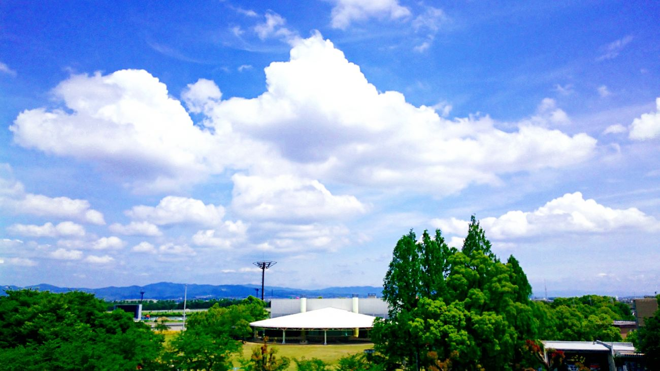 enjoy your life✨😊✨Yesterday Japan Photography Sky Sky And Trees Sky_collection I Love Sky  Nature Beauty In Nature Colors Of Nature Eyem Nature Lovers  Natural Photography EyeEm Best Shots Relaxing Time Enjoy Life Love To Take Photos ❤