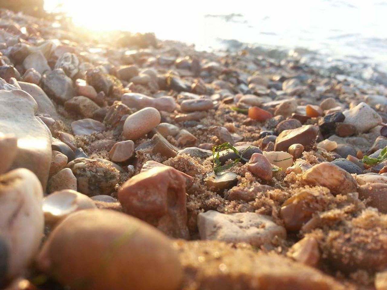 pebble, beach, pebble beach, surface level, shore, nature, selective focus, outdoors, no people, day, close-up, sunlight, beauty in nature